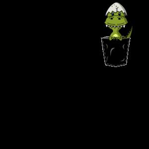 Pocket T Rex dino schwarz