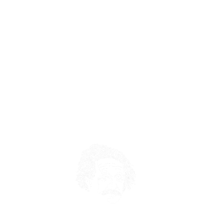 Albert Einstein Stress Idioten