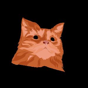 Patetico Katze