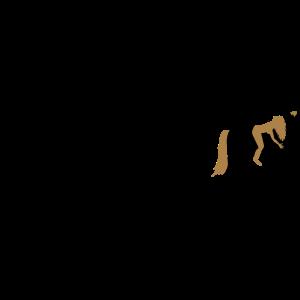 Evolution Reiterin Pferd