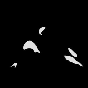 orca Meerestier 1010