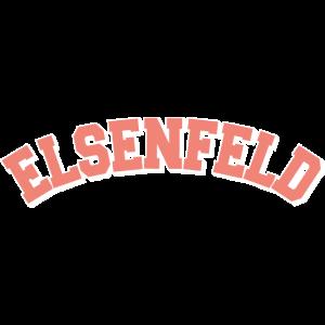 Elsenfeld College