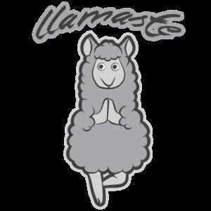 Lamaste Lama