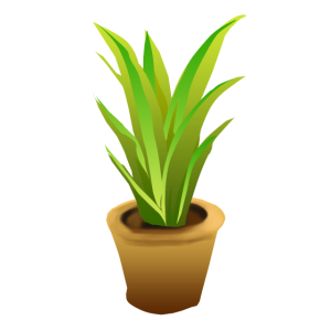 Pflanze im Blumentopf