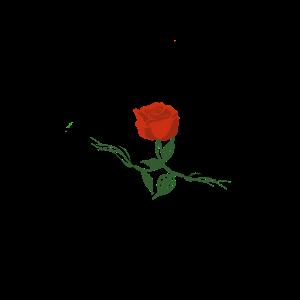 Flowertouch
