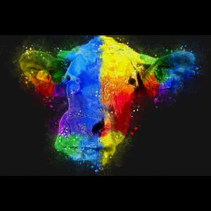 Kuh Kühe Rinder malerei kunst