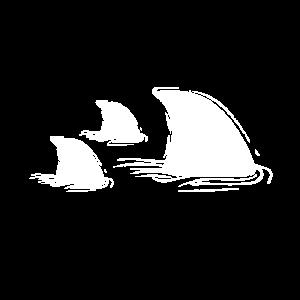 Hai Haifischflosse