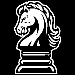 Schach Chess Figur Pferd