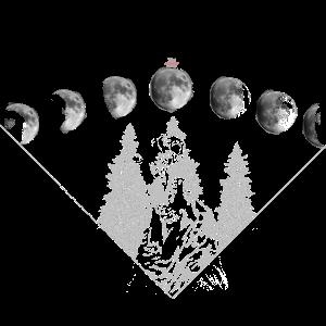 Wolf im Mondschein der Mondphasen