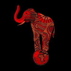 Zirkus Elefant Geschenkidee