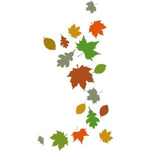 Herbstlaub maple leaf Ahorn Eiche Silhouette