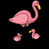 Bild Flamingo