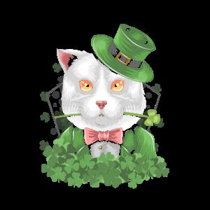 St Patricksday Cat