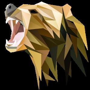Polygon Grizzly Bär
