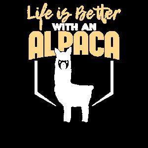 Leben mit einem Alpaka