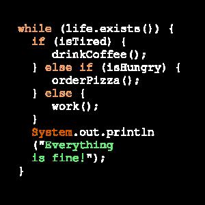 Programmierung, Programmierer und Programmcode