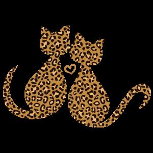Leopard Leo Kätzchen Katzen Verliebt In Love