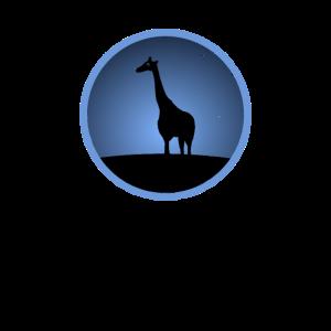 Giraffen Steppe Afrika