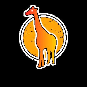 Afrika Savanne Giraffen