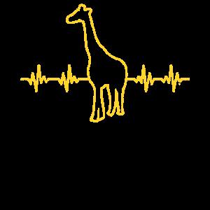 Giraffen EKG