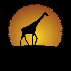 Giraffen Steppe