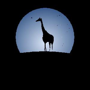 Langhals Giraffen