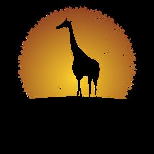 Savanne Steppe Afrika