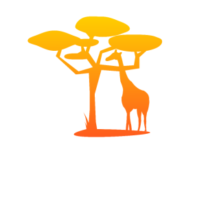 Giraffen Savanne Baum