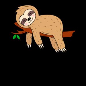 Faultier Sloth