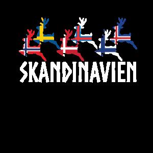 Skandinavien Elch Norwegen Schweden Dänemark
