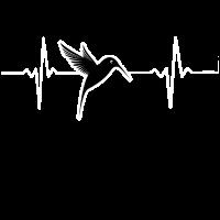 Vogel Herzschlag - Bird Heartbeat