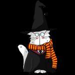 Le chat sorcier