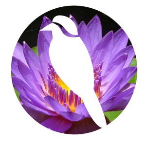 Vogel Flowercontest