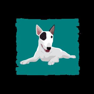 Bullterrier, Hund