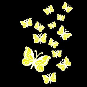 Schmetterlinge weiss-gelb