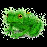 Gras-Frosch