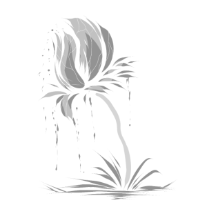 Graue Blüte