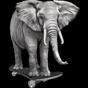 Elefant auf Skateboard - Skater Elefant - Sk8er