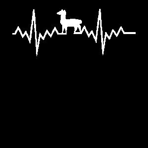 Lama - Alpaka - Fun - Tier - Herzschlag - Süß