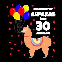 Die coolsten Alpakas sind 30 Jahre alt