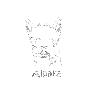Vintage Alpaka | Retro Llama Design