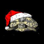 christmas_tortoise