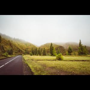 Nebliger Weg auf den Azoren