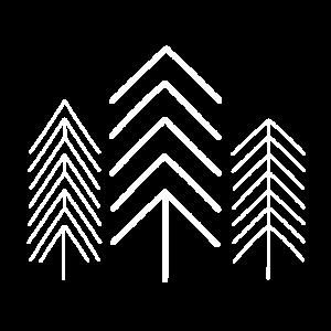 Bäume Tannen einfach gezeichnet