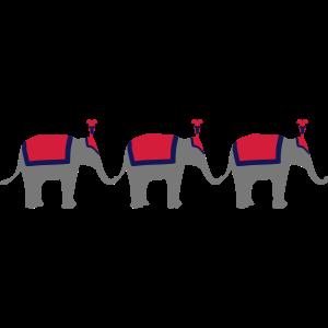 Drei Zirkuselefanten