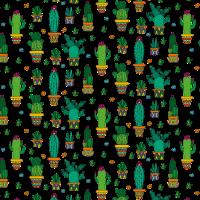 Kaktus Kakteen Wüste Wüsten Pflanze Muster