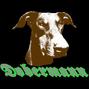 Dobermann,Hundekopf,Hundesport,Hunderasse,Hunde