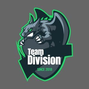 Team Division