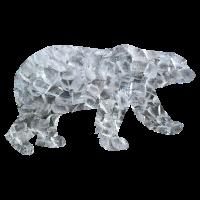 Eisbär Polarbär Eis Bär Nordpol Arktis