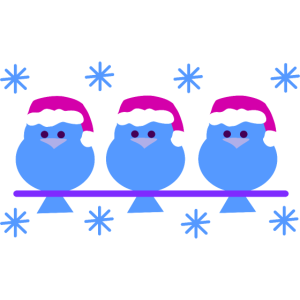 Weihnachtsvögel